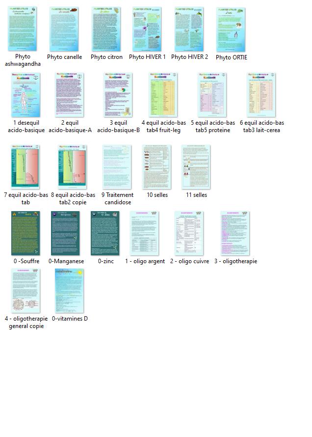 Toutes les fiches2.jpg