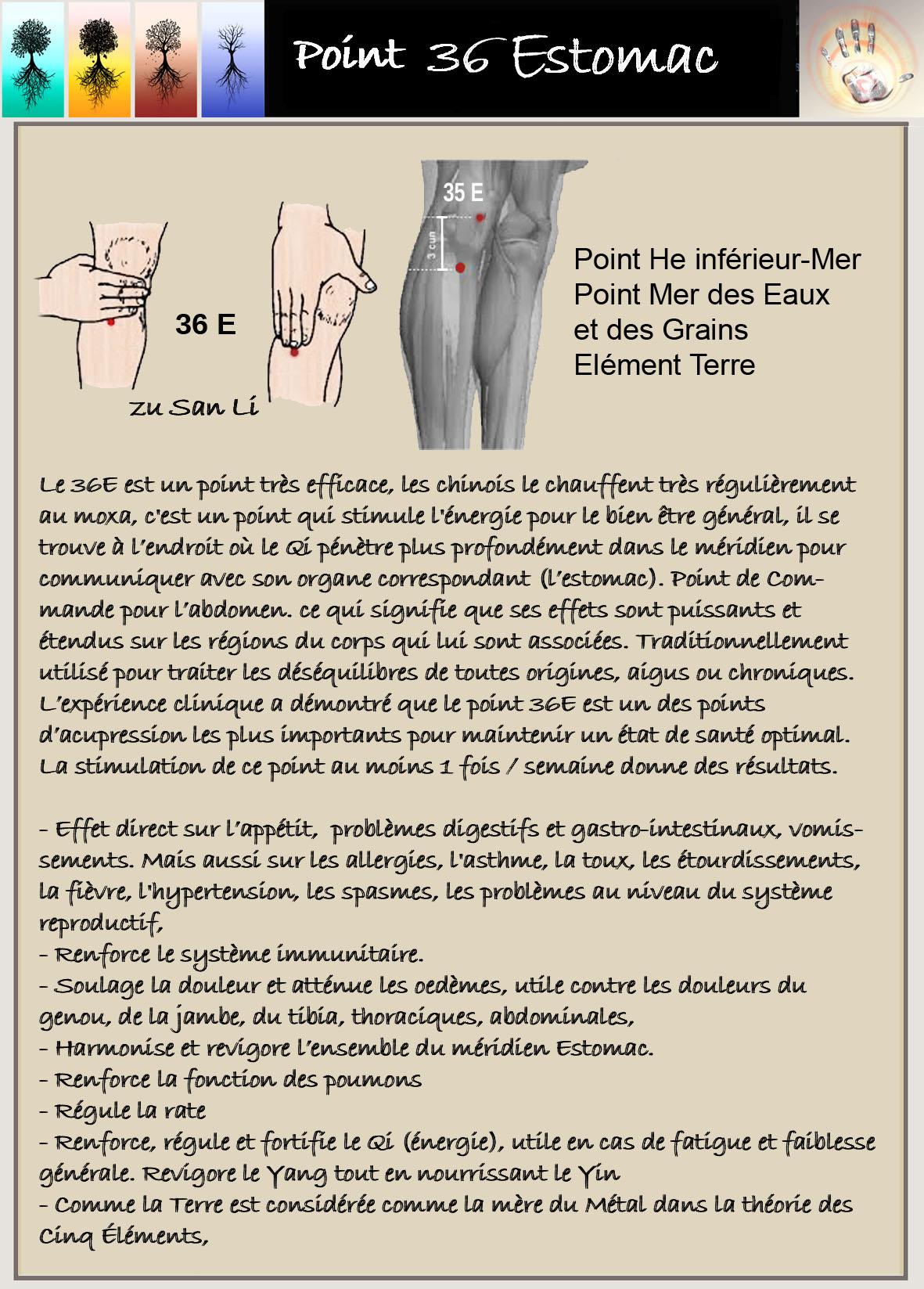 Point 36E.jpg