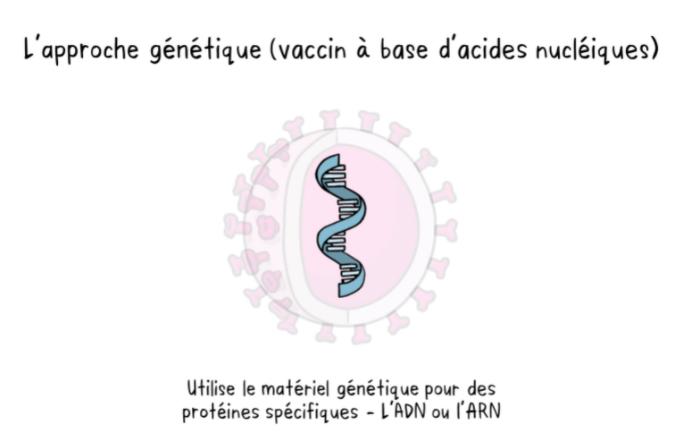 gene-1.jpg