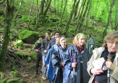 Trailwalker Oxfam 2013 18.jpg