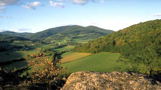 morvan-paysage-1-3-jpg.jpg