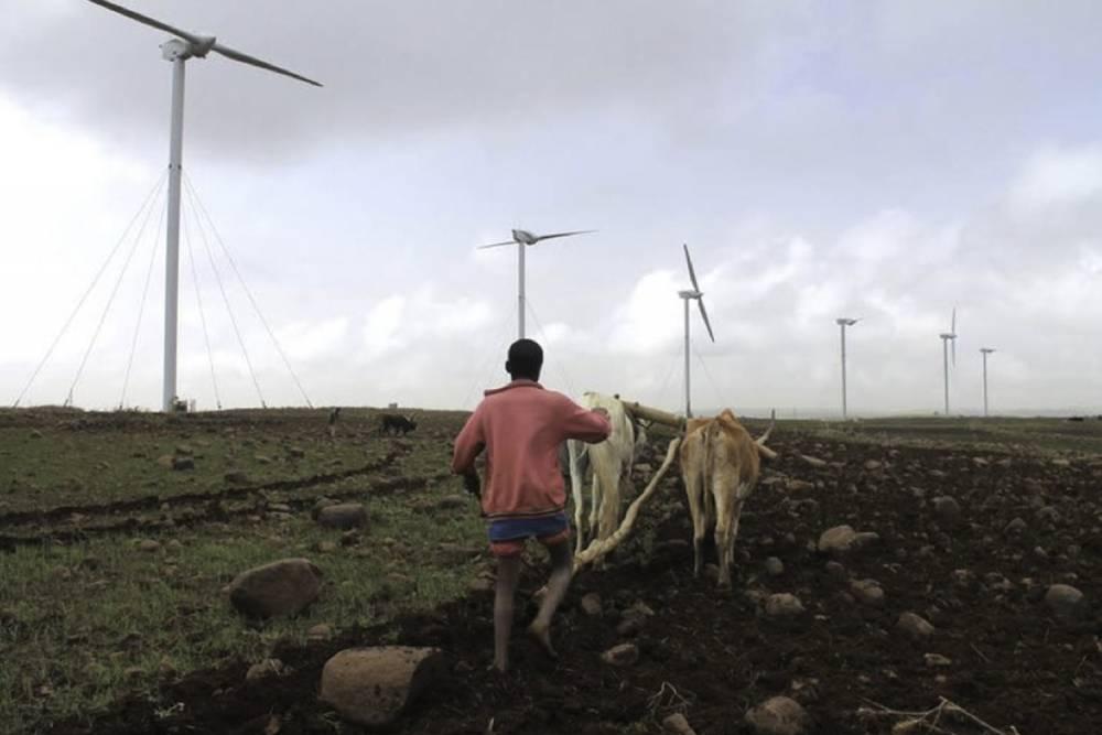Agriculteur éthiopien - éolienne sur les hauteurs d'Adama au sud d'Addis Abeba juin 2015..jpg