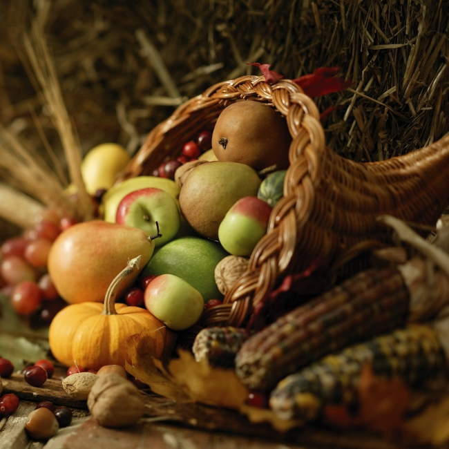 food-autumn-harvest-composition-2048x2048.jpg