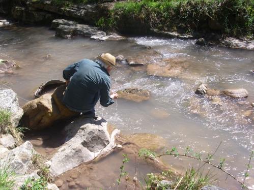 testing the water.JPG