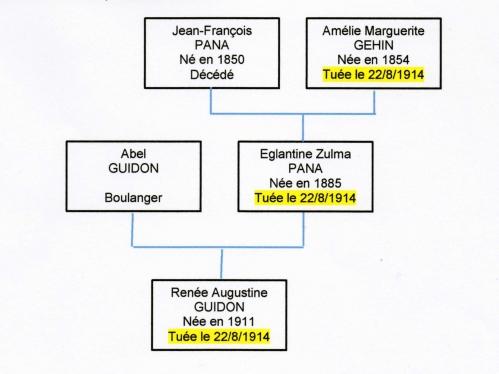 Arbre gene Pana 140118 001.jpg