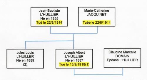 Arbre gene Lhuillier 140118 001.jpg