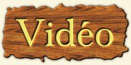 videob2logo17.PNG