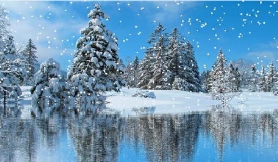 neige 21 18.jpg num3.jpg