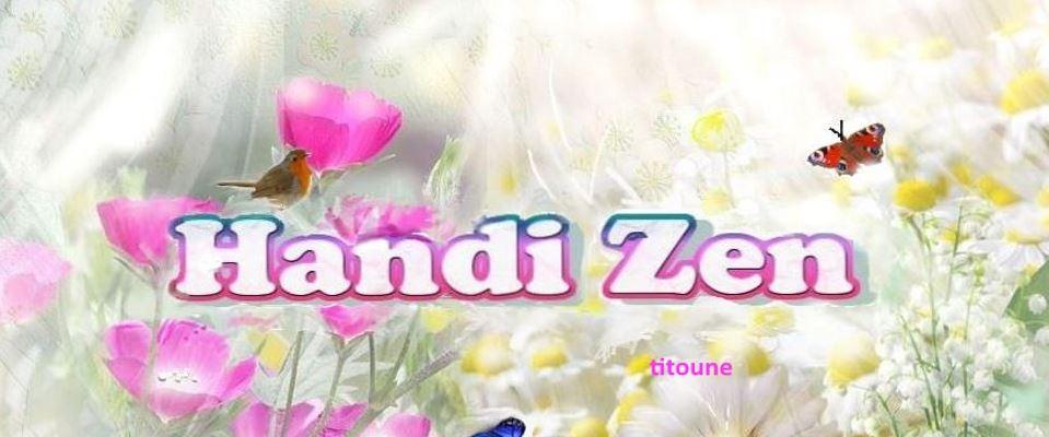 handi-zen