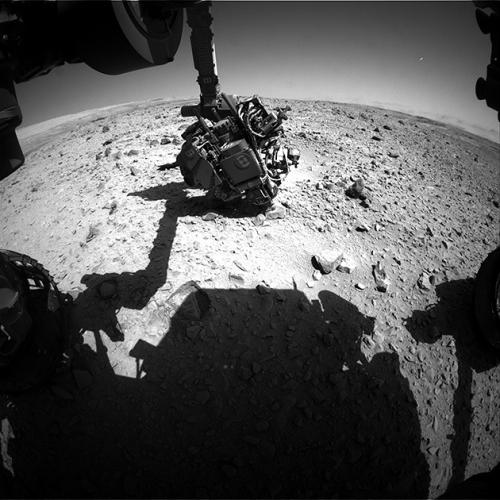 curiosity 2.jpg