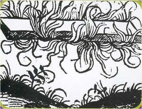 natabilia temporum 1465.jpg
