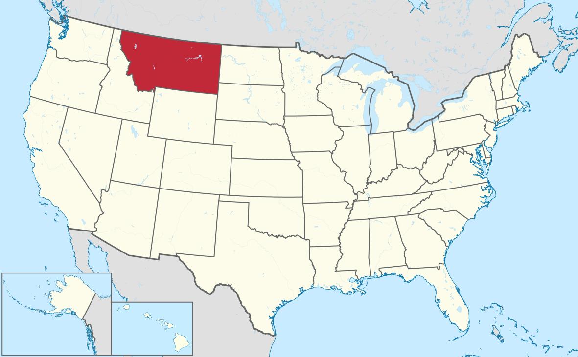 Montana 1.png