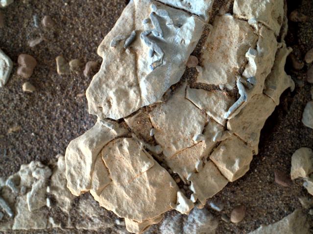Des vers sur Mars 2.png