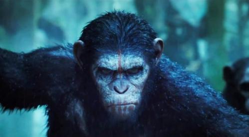 la-planete-des-singes-l-affrontement-videos-52b1aacc90055-672x372.jpg