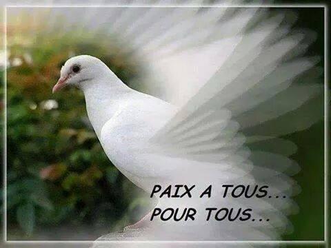 Paix.jpg