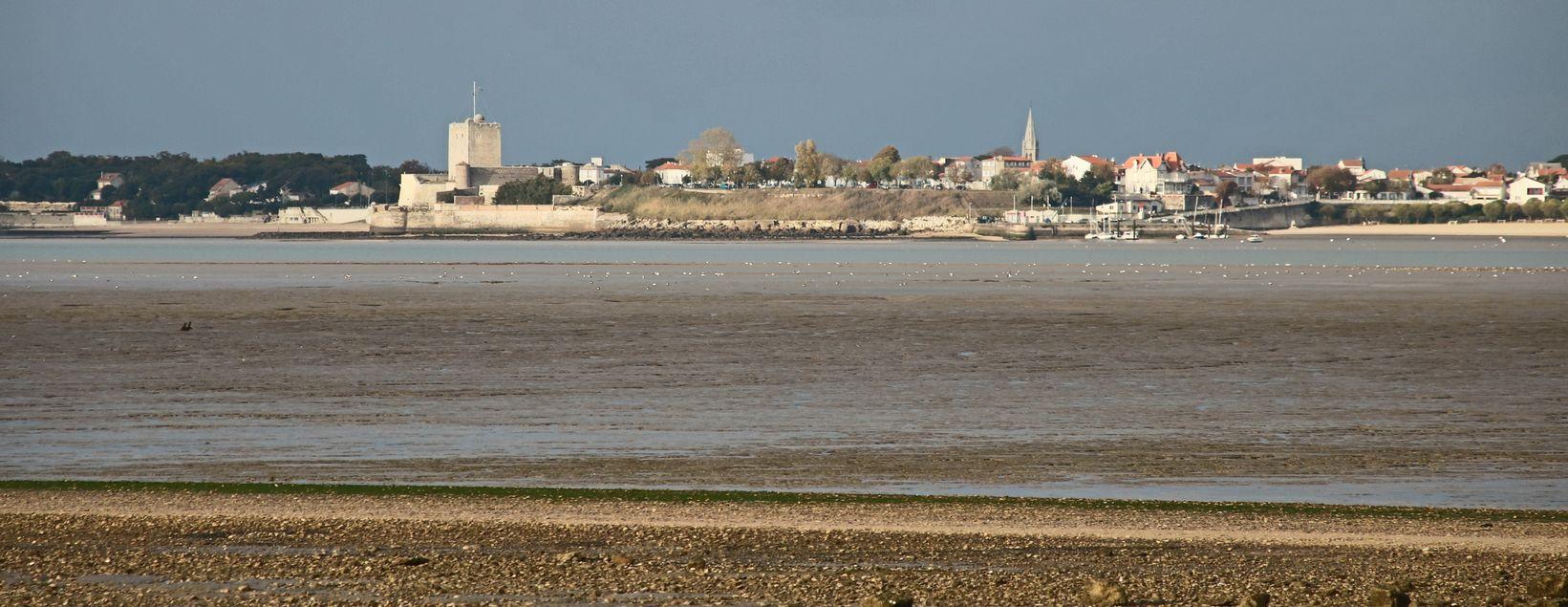UTL Ile madame Vue sur l'Ile d'Aix et fort Boyard 8 11 2016 (3).jpg