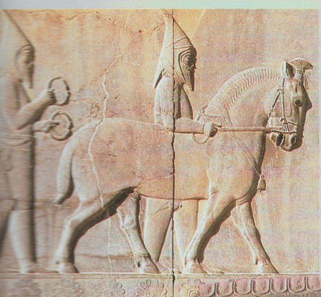 Persépolis frise 001.jpg