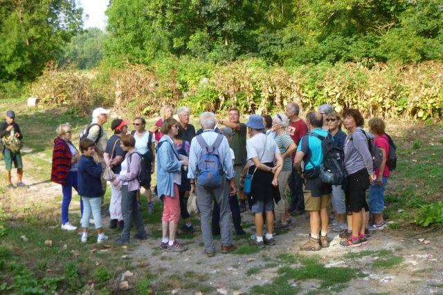 UTL grande marche 5 09 2018 Landrais Canal de Charras groupe3.jpg