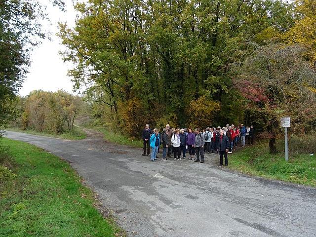 UTL petite marche les bois Saint-Porchaire 13 11 2018.jpg