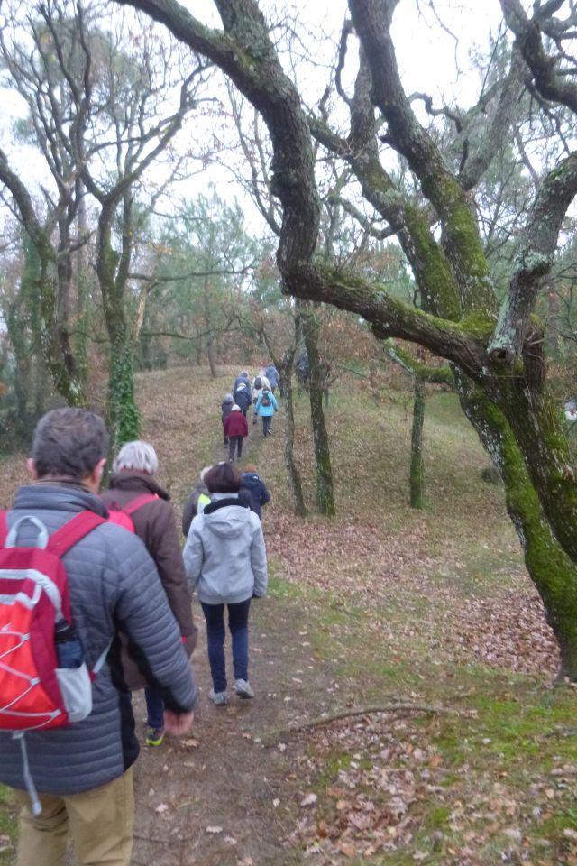 UTL grande marche les bois au retour  Marennes 18-12-2018 .jpg
