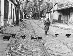 R Doisneau 1973 Bercy.jpg