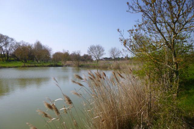 UTL GM lac des Rouches ile Madame 27 03 2019.jpg