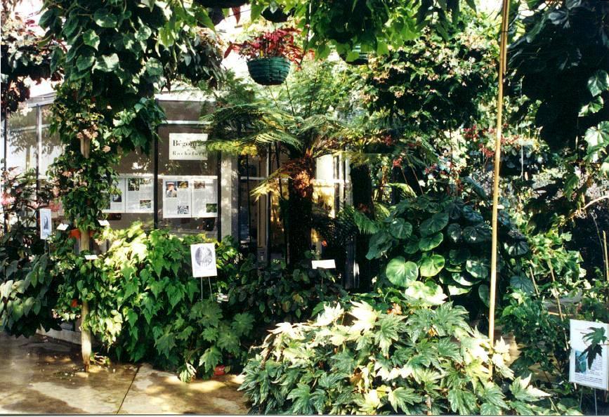 conservatoire bégonia entrée.jpg