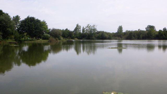 Aigrefeuille Lac de Frace 4 06 2019.jpg
