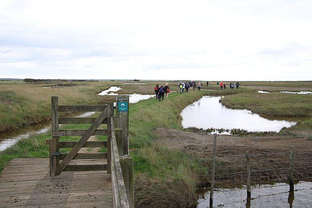 Le groupe dans les polders.JPG