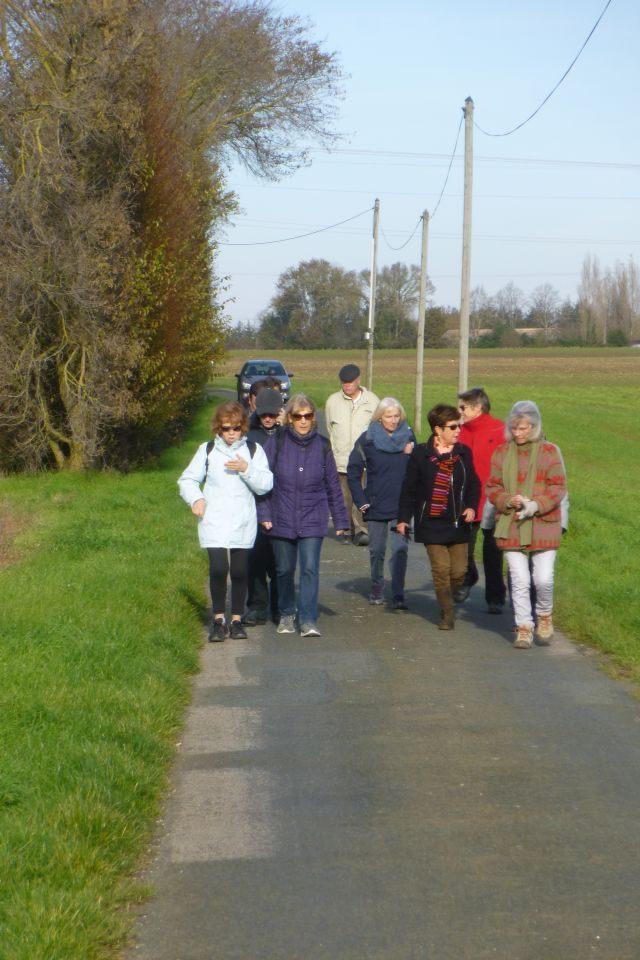 UTL grande marche 20 11 2019 Cabariot lenteur du troupeau.jpg