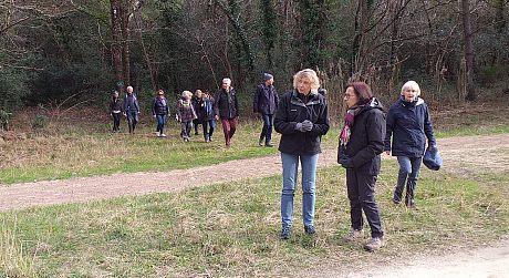UTL grande marche 5-2-2020 forêt de la Coubre  Ronce les bains 2.jpg