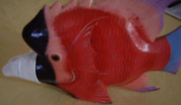 poisson d'avril blog confinement.jpg