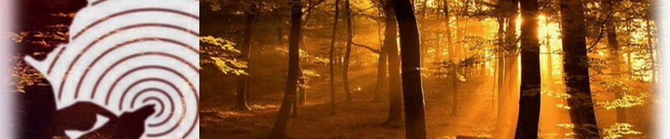 Geobiologie : Bourgogne Franche Comté, Santé de l'habitat
