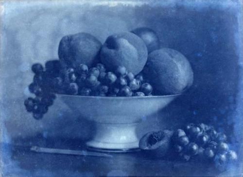 226-720-445-Positif-Corbeille-de-Fruits-au-couteau-1855-.jpg