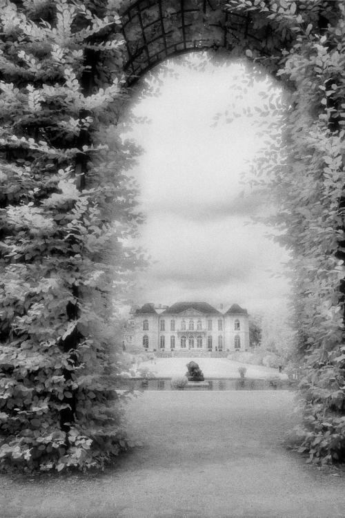 Rodin-500x751.jpg
