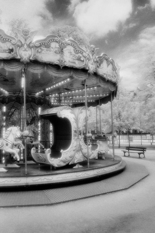 Carousel-500x751.jpg