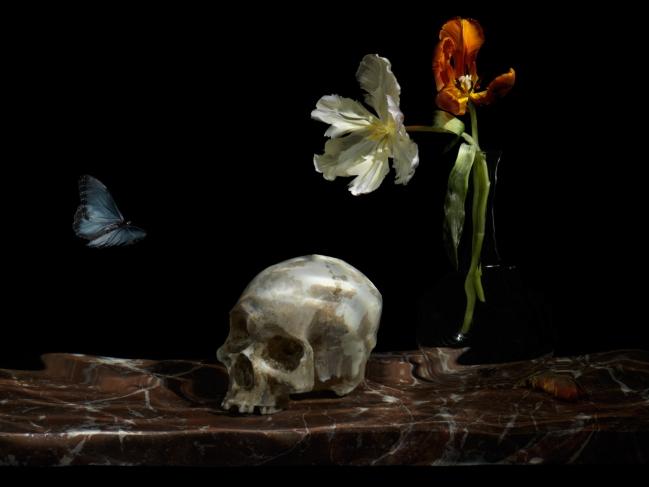 Underwater-Still-Life-Artist-Vanitas-0659-great-leveler_66.jpg