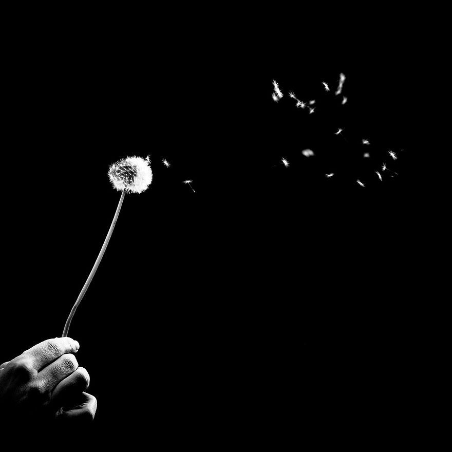 photos-noir-et-blanc-benoit-courti-14.jpg
