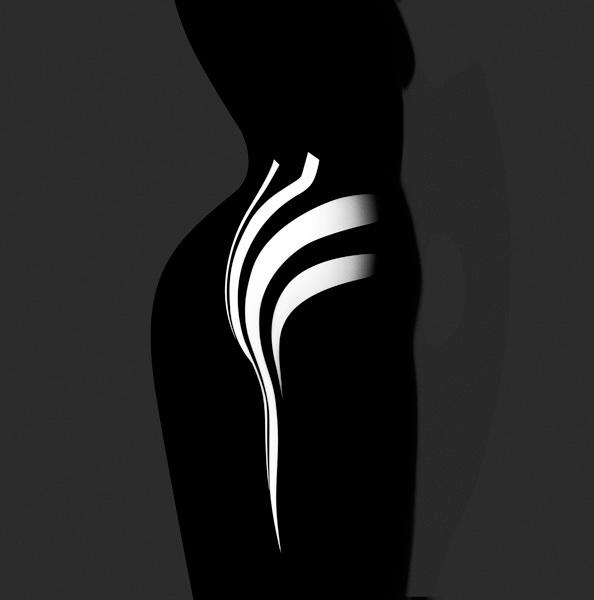 Francis Giacobetti Zebras 09.jpg