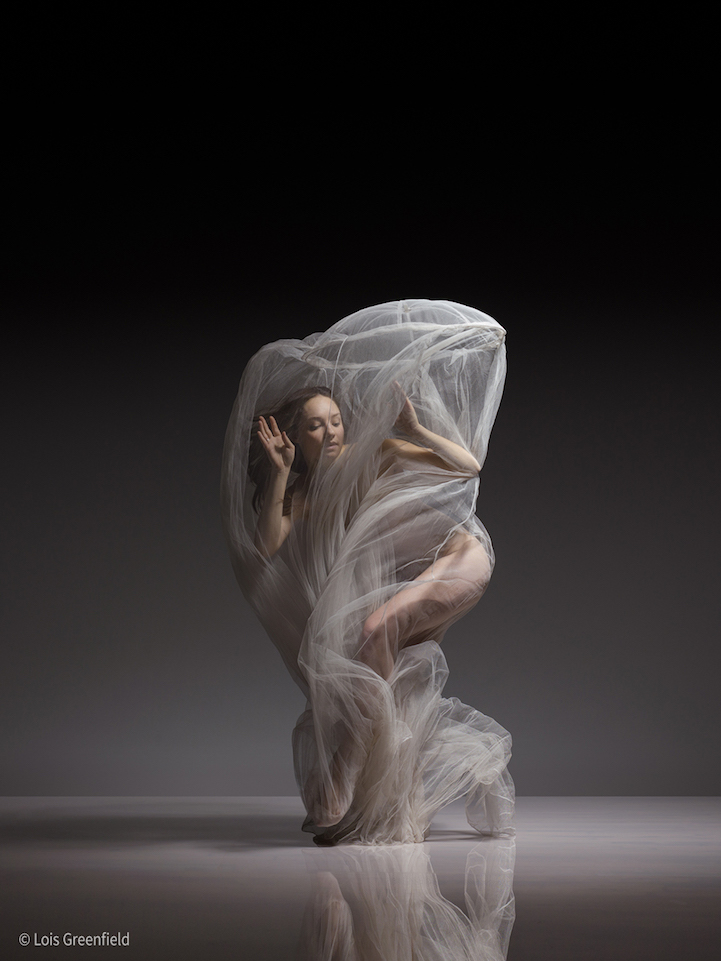 loisgreenfield5.jpg