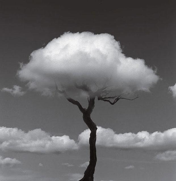 les-impressionnantes-illusions-photos-en-noir-et-blanc-de-chema-madoz14.jpg