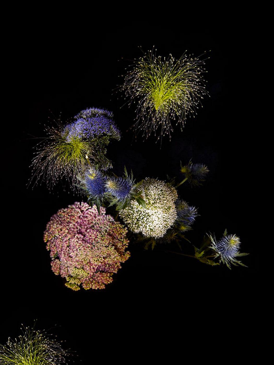 sarah-illenberger-flowerwork-01.jpg