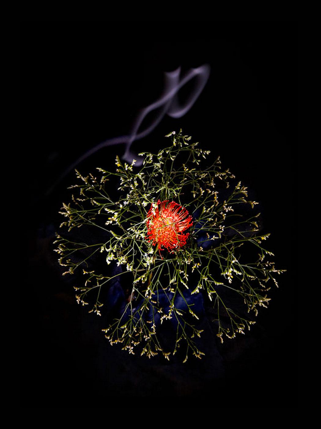 sarah-illenberger-flowerwork-04.jpg