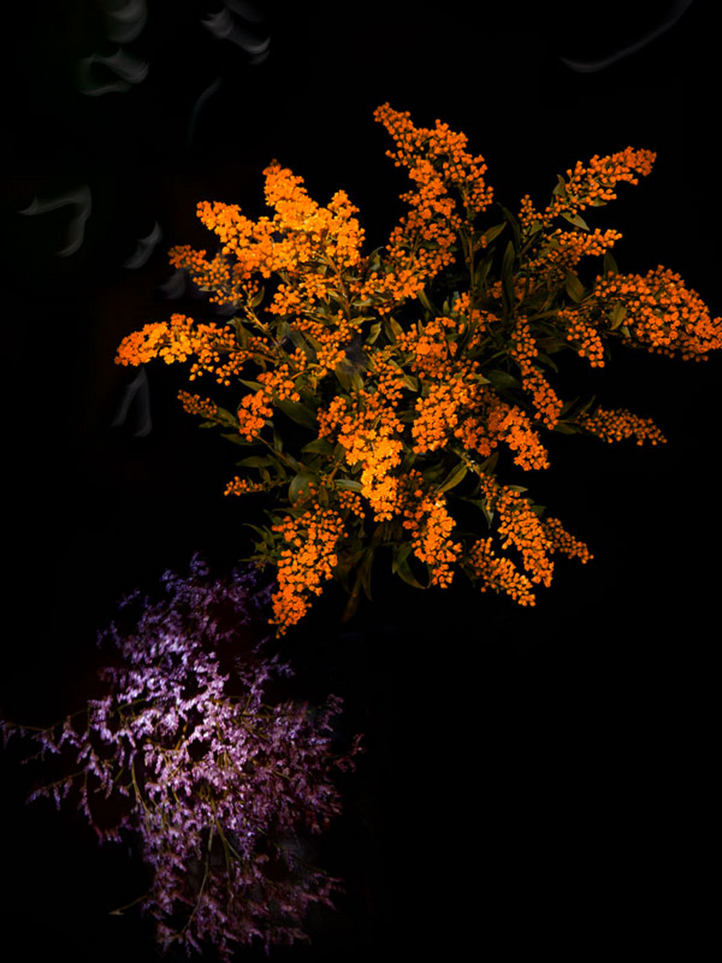 sarah-illenberger-flowerwork-05-1.jpg