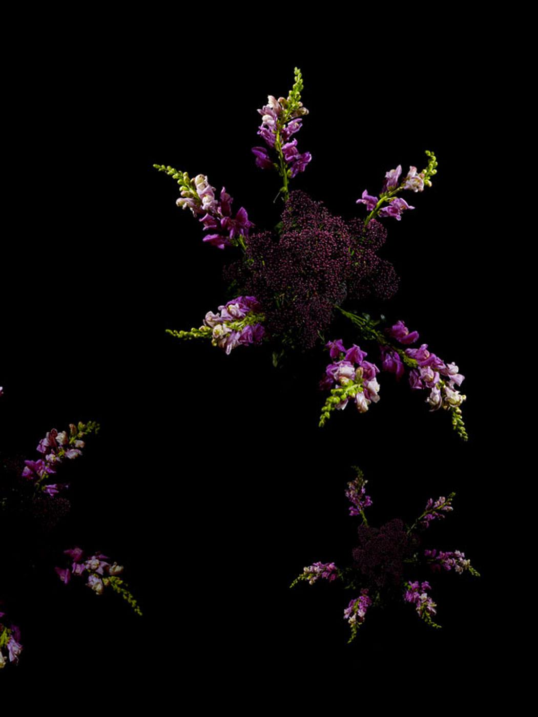 sarah-illenberger-flowerwork-07.jpg