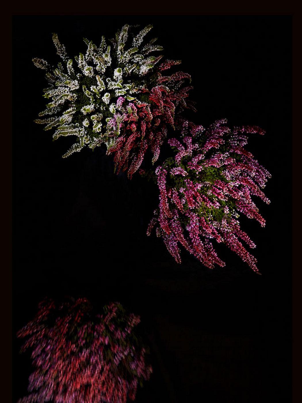 sarah-illenberger-flowerwork-09.jpg