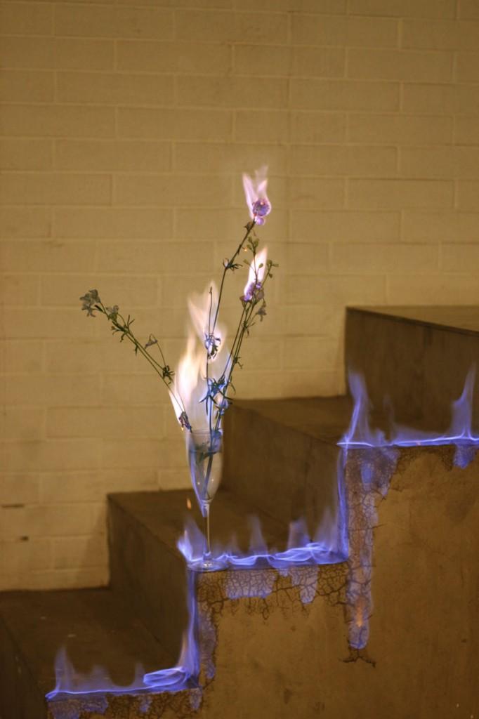 fleur-feu-06.jpg