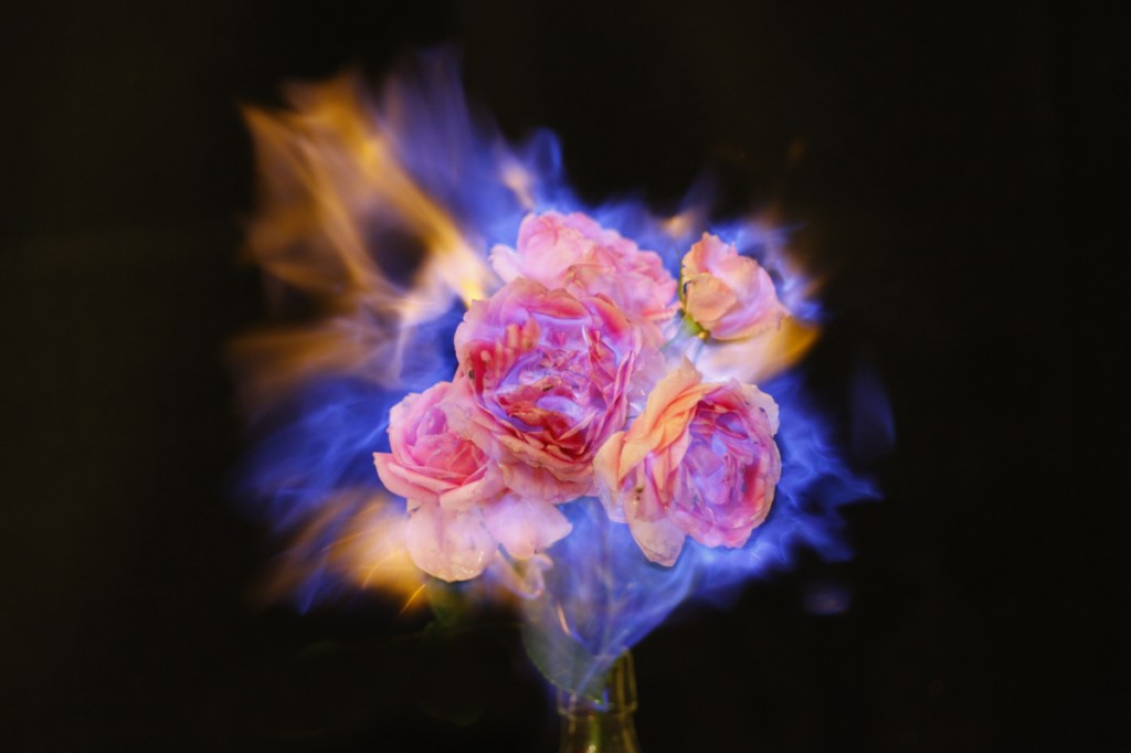 fleur-feu-04.jpg