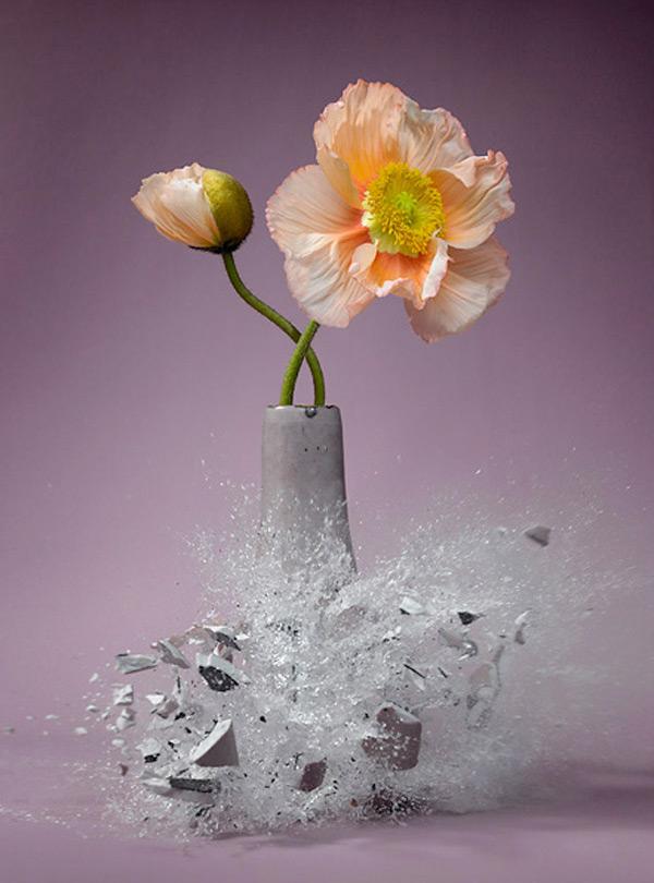 PP-Exploding-Flower-Vase-Martin-Klimas-5.jpg