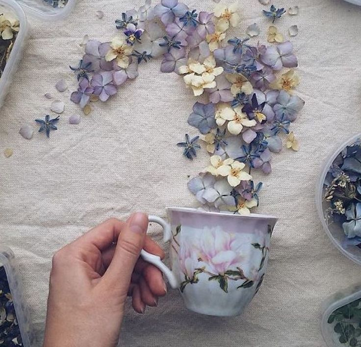 copy-of-flower-floral-tea-marina-malinovaya-17-58d3bc01e3bfa-700.jpg